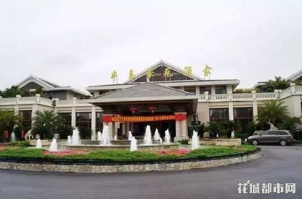 不要再问了!吐血整理广州55家早茶攻略!
