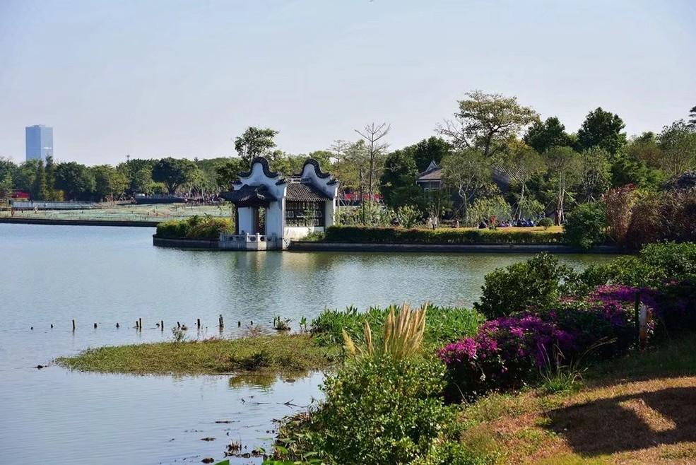 广州海珠湿地