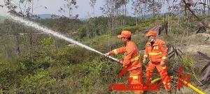 """花都区开展森林灭火""""双盲""""应急演练 提高森林防灭火扑救能力 ..."""