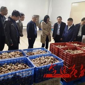 区领导赴贵州省普定县关岭县对接推进东西部协作工作